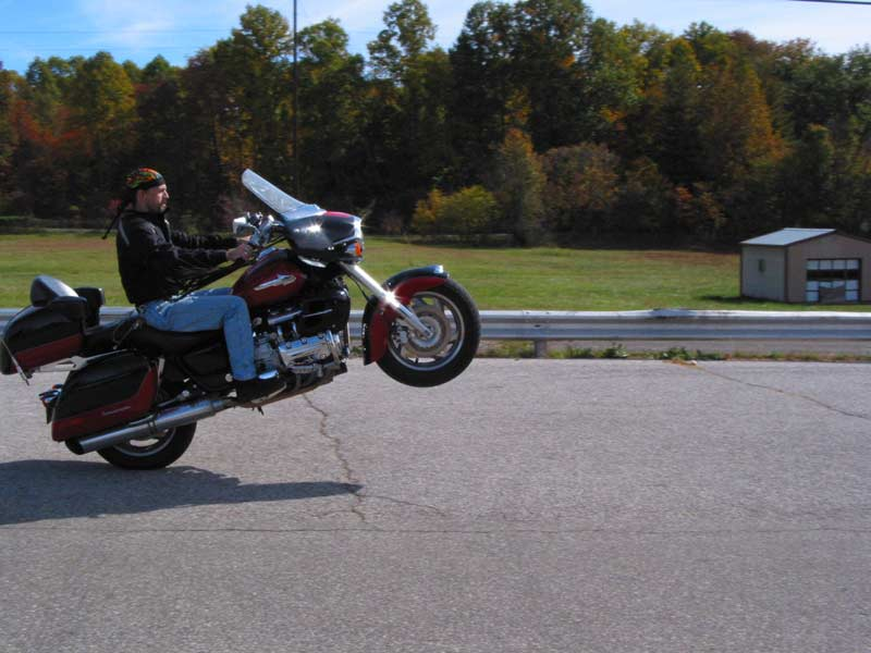 Yes, shafties can wheelie
